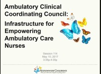 Ambulatory Clinical Coordinating Council: Infrastructure for Empowering Ambulatory Care Nurses